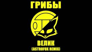 Download Грибы - Велик AstroFox Remix Mp3 and Videos
