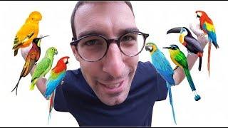 L'EXPEDITION MAX BIRD !