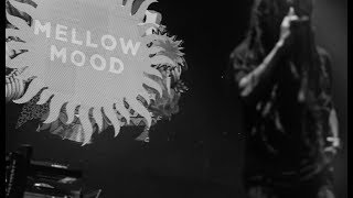 Mellow Mood - String Up A Sound (Live at Home Festival, Treviso IT)