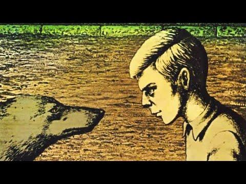 Мультфильм внимание волки