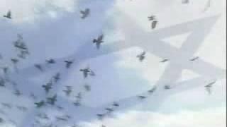 HASDEI AVOT - HEBRON - le Film