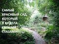Потрясающей красоты сад Александра Марченко НАЦИОНАЛЬНОЕ ДОСТОЯНИЕ!!!