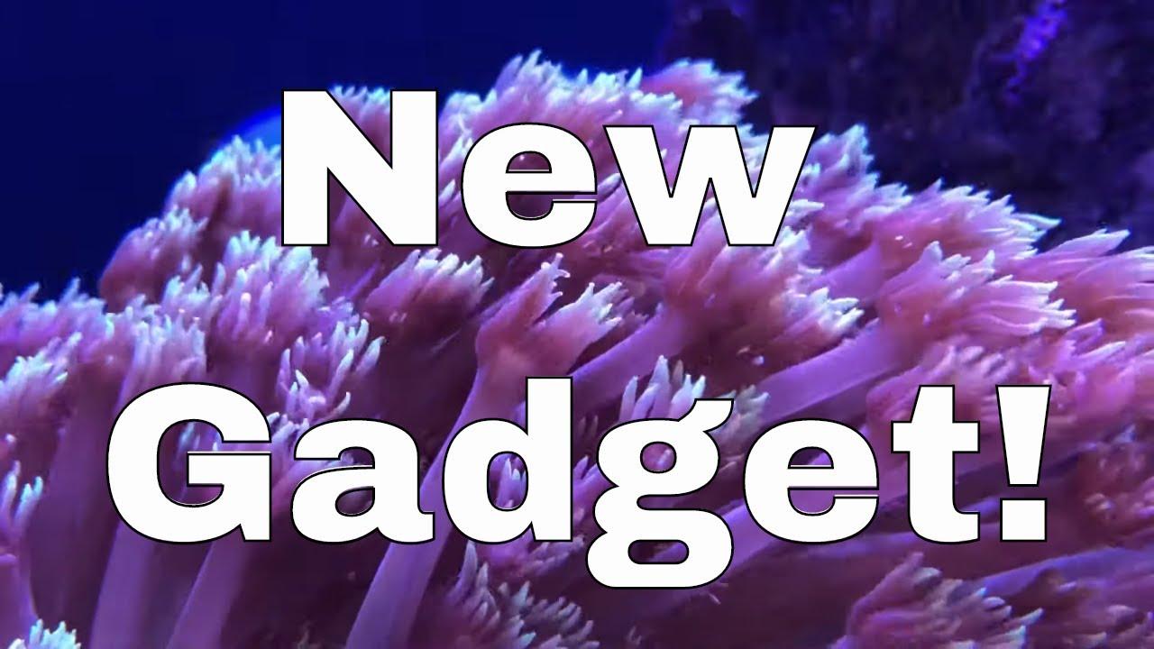 My Newest Saltwater Aquarium Gadget