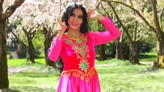 رقص بسيار زيباى ايرانى با زبان اشاره براى اولين بار