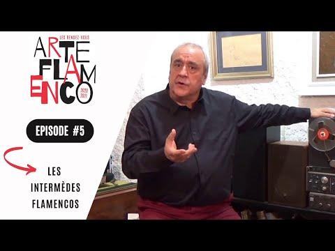 [ Épisode 5 ] Les Rendez-vous Arte Flamenco, c'est aussi des Intermèdes flamencos