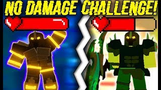 DOING THE *NO* DAMAGE CHALLENGE IN DUNGEON! (ROBLOX DUNGEON QUEST)