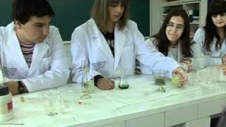 Extracción de pigmentos fotosintéticos