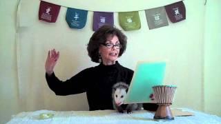 Proper Opossum Poetry Corner