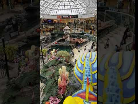 Touring West Edmonton Mall Attractions and shops