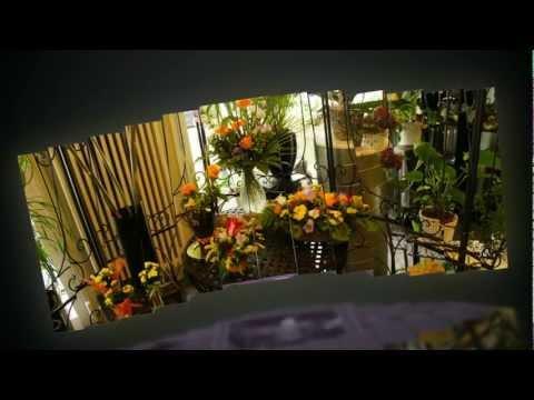Blumen Ammann - Fleurop Service und Hauslieferdienst