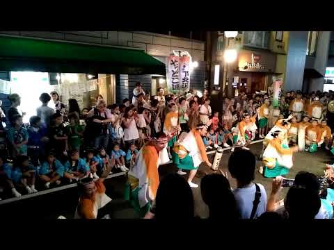 「第52回 下北沢一番街 阿波おどり」2日目 やっとこ連 組み踊り【2】