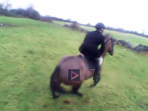 North Galway Hunt- Belclare