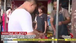 Шок! В Китае праздник собачьего мяса  10 тыс собак станут жертвами праздника  25 06 2015