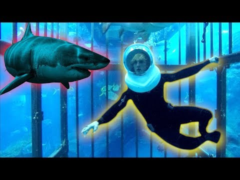 Thumbnail: TRAPPED IN A CAGE WITH GIANT SHARKS OHMYGAWWWWDDDD!