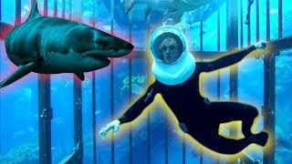 Video TRAPPED IN A CAGE WITH GIANT SHARKS OHMYGAWWWWDDDD! download MP3, 3GP, MP4, WEBM, AVI, FLV Januari 2018