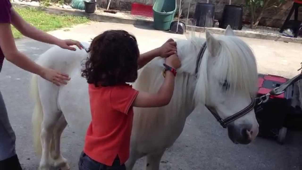 Babyshet, les débuts de Kamélia à poney