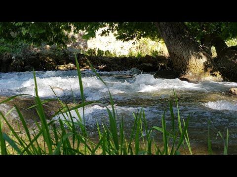 Звуки природы. Шум ручья