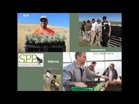 Sage grouse habitat conservation through prisons