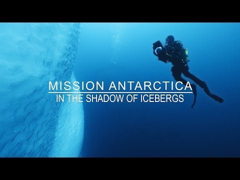 Diving the Icy Blue Waters of Antarctica for Blue Planet II: Hugh Miller