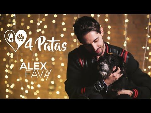 Alex Fava - 4 Patas mp3 baixar