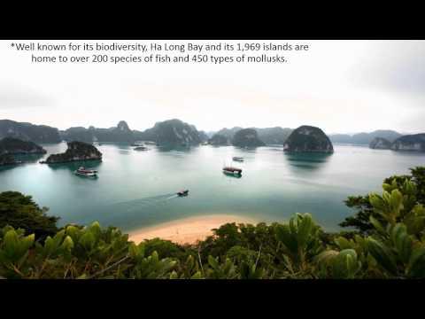 vietnam powerpoint chandler boynton