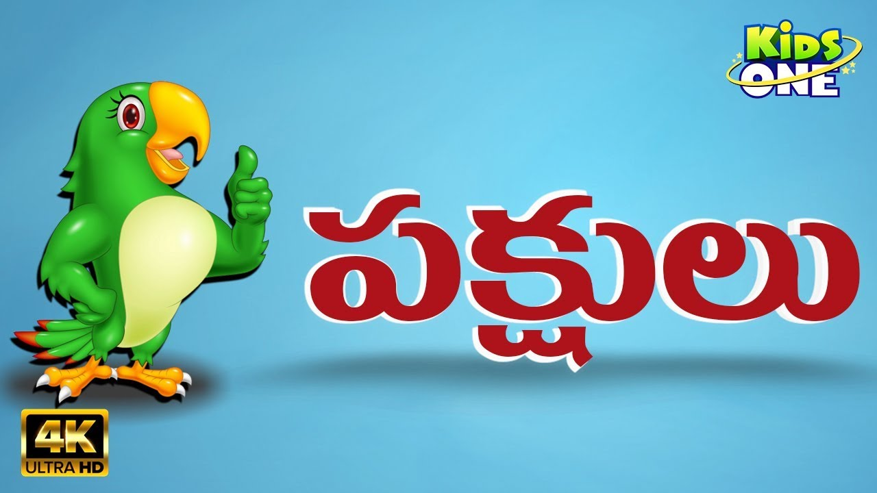 Birds Names And Their Sounds పక ష ల ప ర ల Learn Birds Names In Telugu Kidsonetelugu Youtube