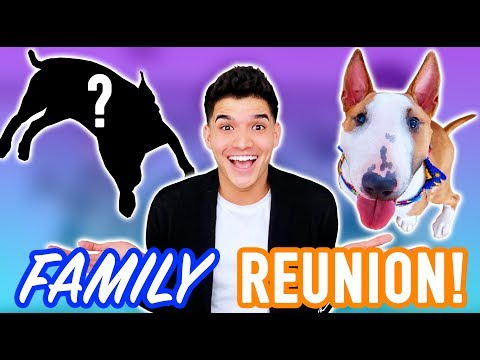 PUPPY MEETS HIS FAMILY FOR THE FIRST TIME!