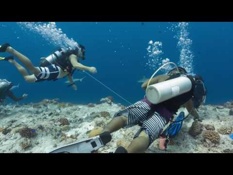 Underwater proposal Palau 2016