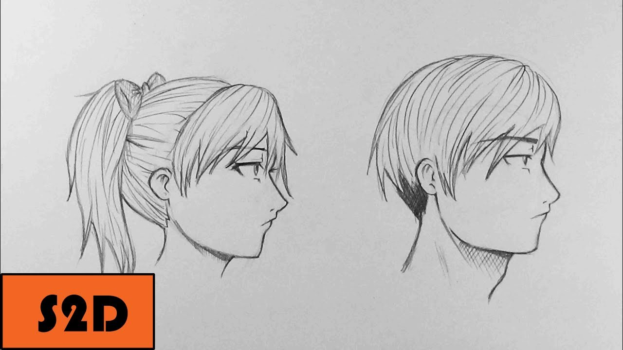 how to draw a profile view male female youtube