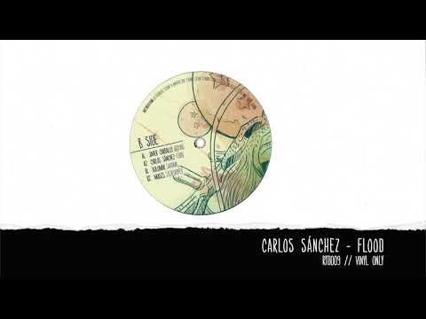 Carlos Sánchez   Flood [Rooted Series] [RTD009] 96Kbps Mp3