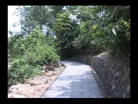 DAM CUOI THAI THAO 1