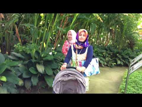 Visiting Bali Bird Park 2018
