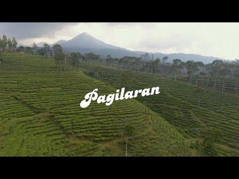 Wisata Kebun Teh Pagilaran Kabupaten Batang