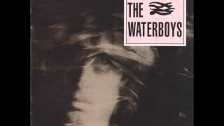 THE WATERBOYS A Girl Called Johnny