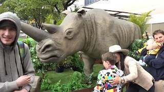 2019 Royal Show TV - Safari Zoo Adventure