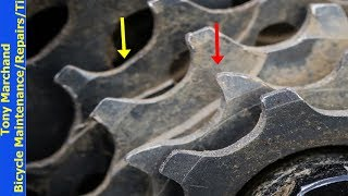 How to check for bicycle cassette cog wear and when to replace cassette