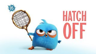 Angry Birds Blues | Hatch Off - S1 Ep5