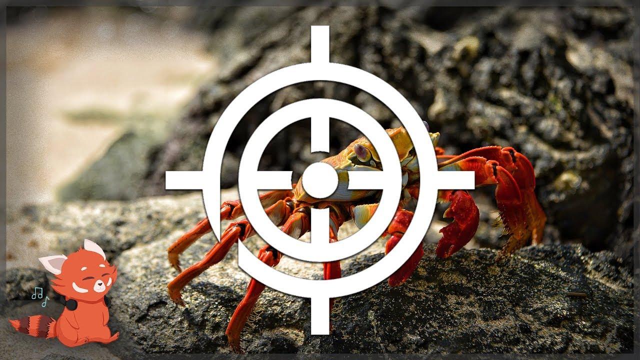 Noisestorm - Crab Rave VS INTERCOM - Truth & Malice ~ [Prime Ordnance Mashup]