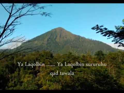 Habib Syech - Ya Laqolbin (video Lirik)