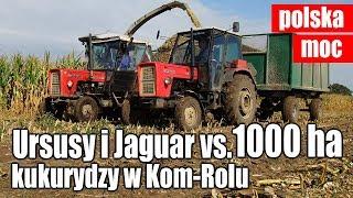 Ursusy i Jaguar vs. 1000 ha kukurydzy w Kom-Rolu (dźwięk silników)