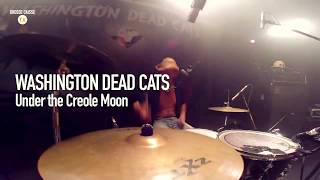 Washington Dead Cats - Under the creole moon - Live