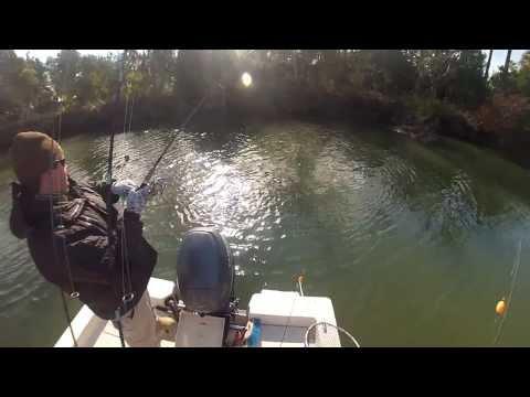 "Redfish Isle of Palms South Carolina ""Knot Stressed"" fishing charters"