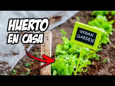 Espantap jaros casero para huerto urbano tutorial doovi - Como hacer un huerto urbano ...