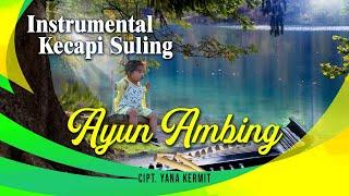 Endang Sukandar - Sundanese Instrumental Kacapi Suling - Ayun Ambing