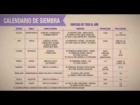 La Huertina De Toni Calendario De Siembra.Capitulo 4 El Calendario De Siembra