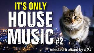 IT'S ONLY HOUSE MUSIC #2
