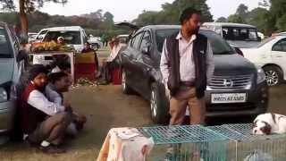 Amazing Dog Show in Ludhiana