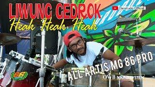 Gambar cover LIWUNG GEDROK MANTOL  ALL ARTIS MG 86 PRO