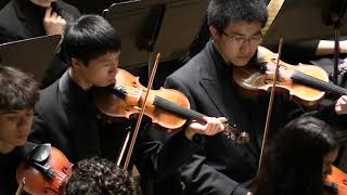 "Regina Carter & MYS: ""4 Sisters"" Concerto by David Schiff. Mov 3, ""Satin"""