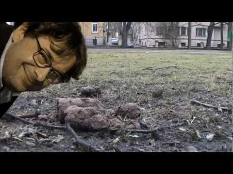 Ärapanija - Tallinna tutvustusvideo